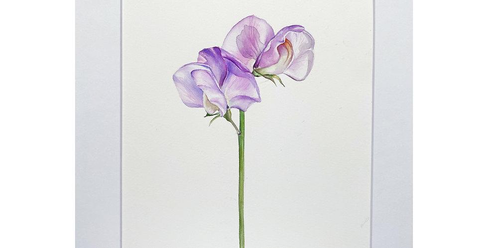 Violet flower Wall Art