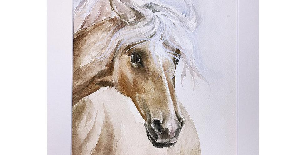 Horse Wall Art Online
