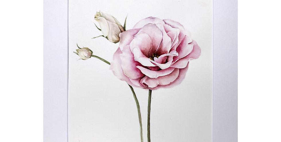 Flower Portrait Wall Art