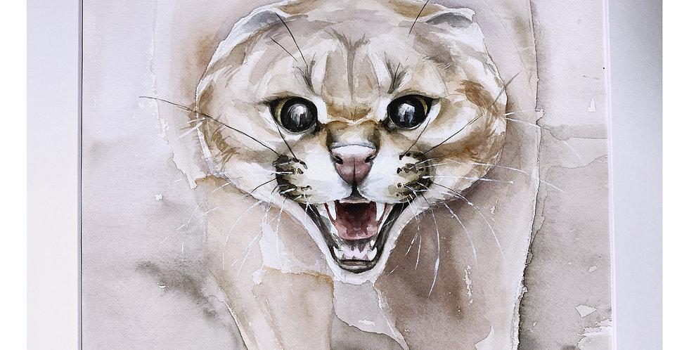 Anger Wall Art Online