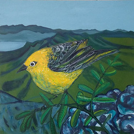 the little bird and the biggest view.jpg