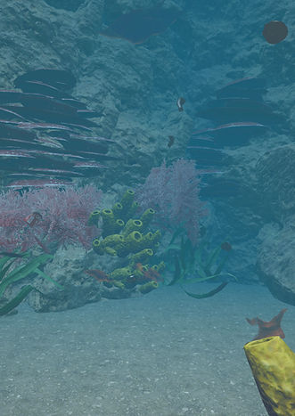 Warrior9 VR's project Our Ocean Life, an immersive experience