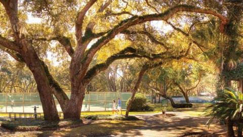 Showdown at Omni Amelia Island Racquet Park
