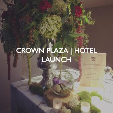 Crown Plaza Hotel Launch event.