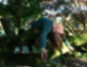 09 HEART OPENING IN TREE Sarah Gray Yoga