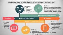 Behind the scenes of gene discovery
