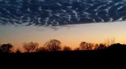 Sunset on the Farm, Iowa