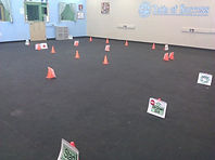 Course for our last Saturday Rally class