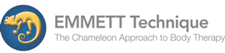 Emmett technique logo.png