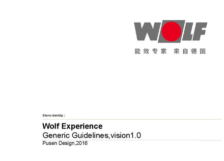ExperienceGenericGuidelines_WOLF_2016120