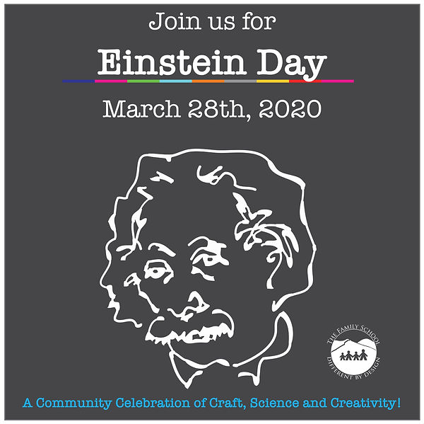Einstein Day 2020 website .jpg