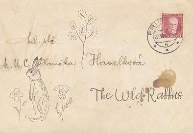 The Wild Rabbits