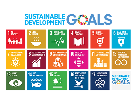 The sustainable development goals. Illustration: un.org