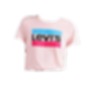 It List_Levis Graphic Tee.png