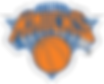 Knicks Primary Logo.png