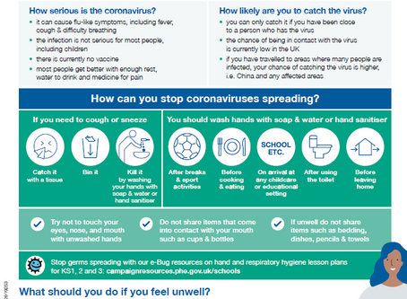 Government Coronavirus Advice for Schools