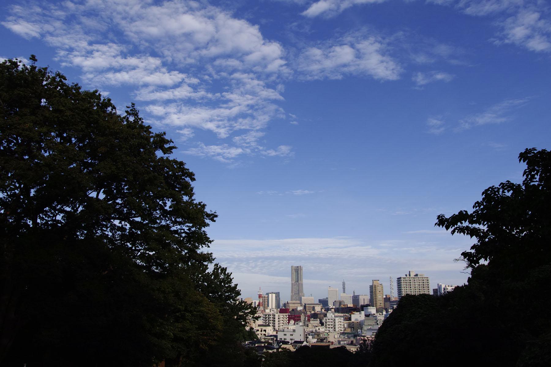 おはよう、横浜。SIGMA sd Quattro 18-35mmF1.8