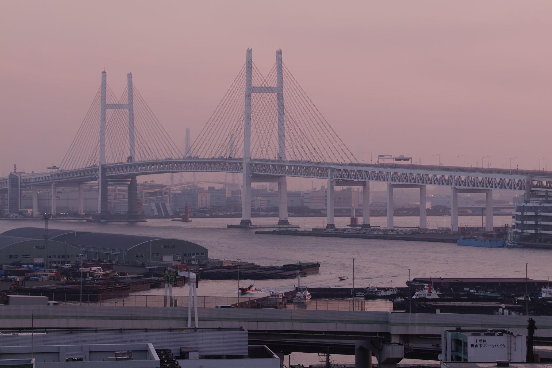 おはよう、横浜SIGMA sd Quattro50-100mm F1.8