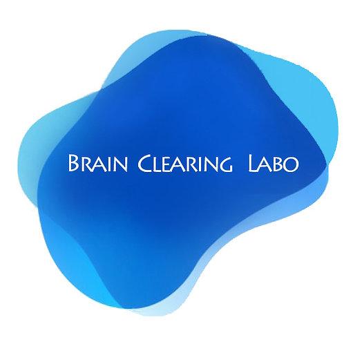 悩みを根本から解決する 脳内クリアリングⅡ 使いこなす(4時間)