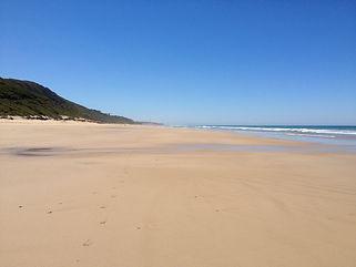 Moggs Beach Mar 13 079.jpg