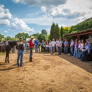Один день на ранчо