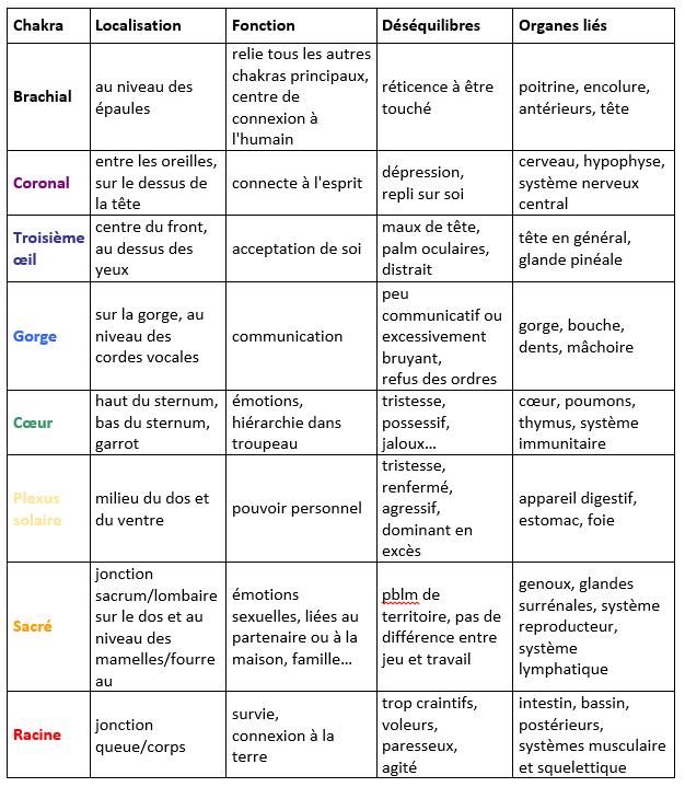 tableau-chakras