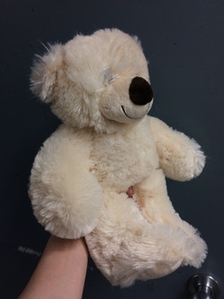 Bear Pre-Distresssing