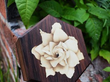 Gardenia on Bolivian Rosewood