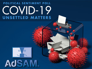 POLITICAL SENTIMENT POLL 2020 - COVID-19: UNSETTLED MATTERS