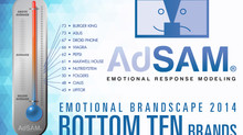 AdSAM® 2014 Brandscape - Bottom Ten Brands Report