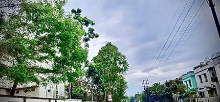 AbhishekKumarSinha_Weather_8252771180 -