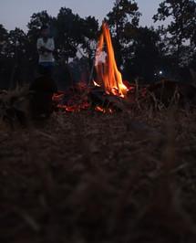 subhankardutta_fire_6295524780.jpg
