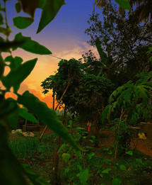 Soubhik Ghosh_Nature Beauty_8101170167 -