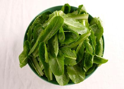 Romaine-hydroponic-lettuce_imagine-farms.jpg