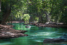 body-of-water-between-green-leaf-trees-7