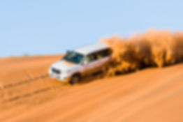 4 x 4 cresting a sand dune