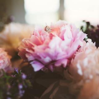 Jannicelli Shutt Wedding-0331.jpg