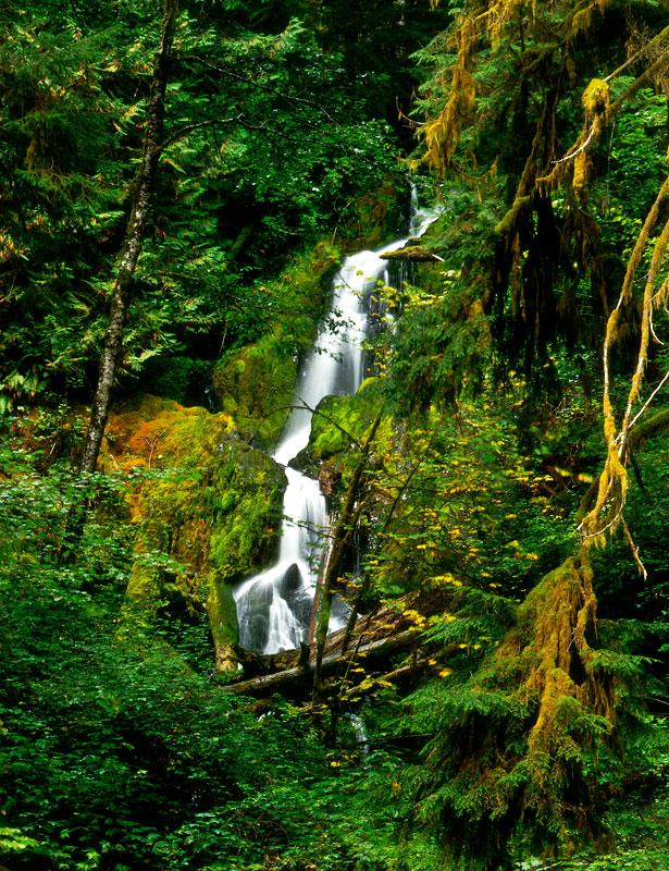Mineral Creek Waterfall
