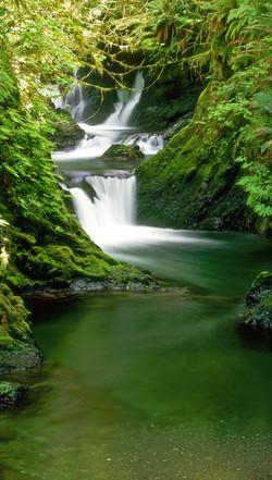 Willaby Creek Waterfall