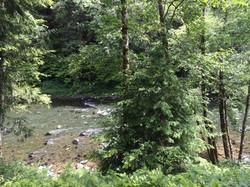 A_Cozy_River_House_I - Sol Duc River