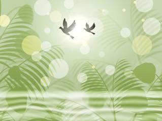 Wishing you Peace and Joy this Festive Season