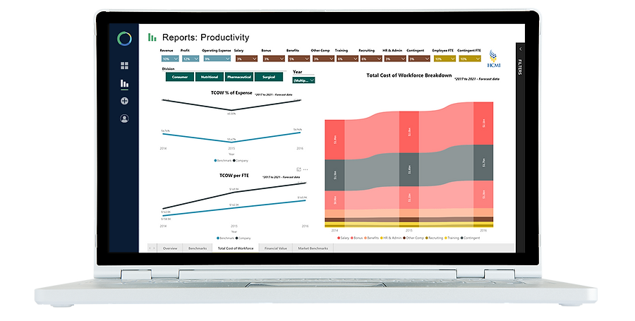 Solve Workforce Analytics Software