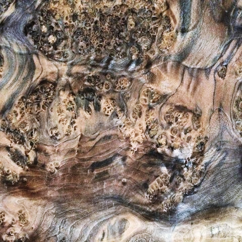 oak burl wood