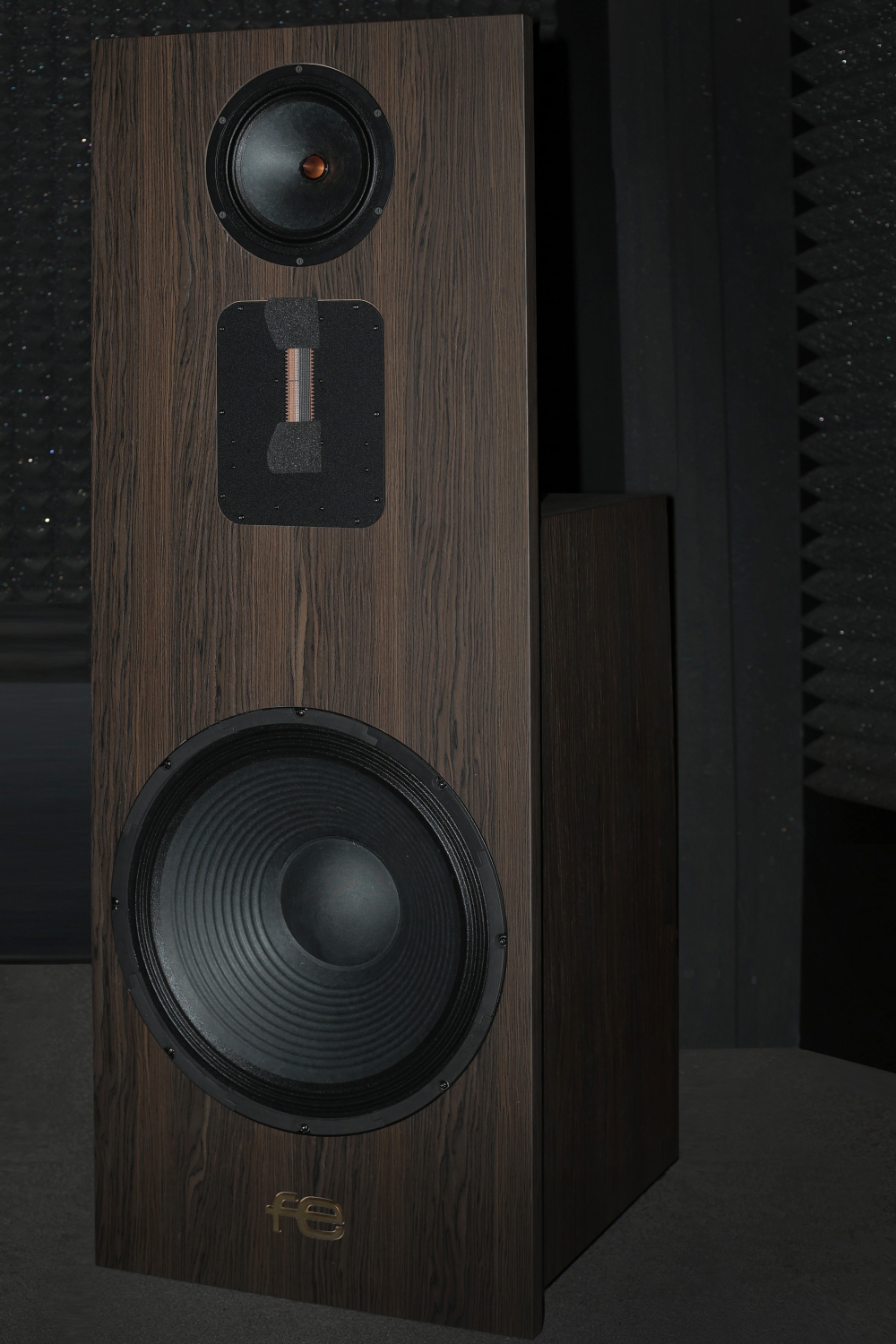 FE SPEAKERS front