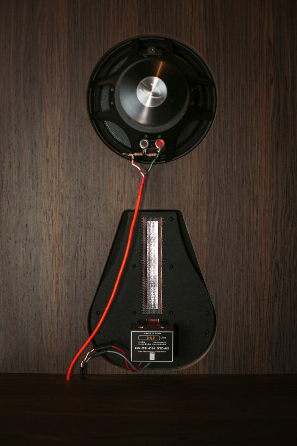 FE_SPEAKERS_dipole