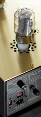 Pacific Hybrid - 3.jpg