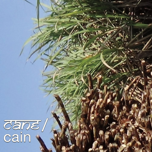 Cane/Cain