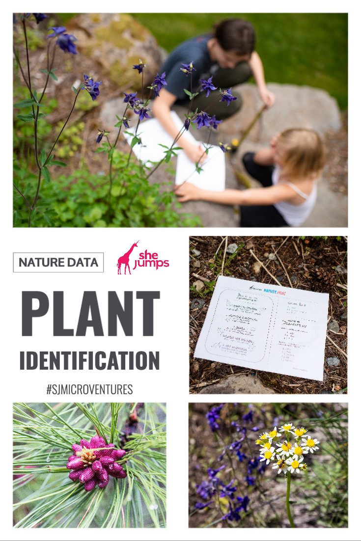 Plants spark curiosity. Now, It's time to learn and practice plant identification whether you're on the trail or in the yard or around the neighborhood.
