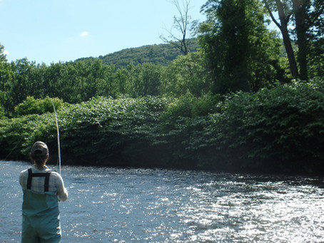 Fly fishing Day with Berkshire Rivers Flyfishing