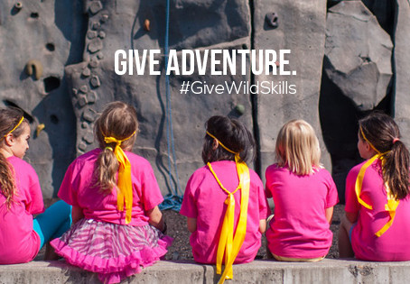 Join Us In Our Campaign To Fund Wild Skills